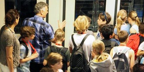 2015 Schoolkinderen op bezoek in de zwerfkattenopvang